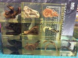 MSJ 10 Jurassic Dinosaurs Stones crystal FOSSILS Figure Set non UHA T-Rex Raptor