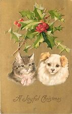 1906 Winsch Embossed Chrostmas Postcard Tabby Cat & Maltese Dog, Helena Maguire