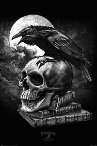 NEW poe's raven alchemy gothic pyramid maxi wall poster 61cm X 91cm pp34272 58