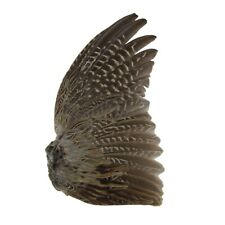 Natural Pheasant Wing & Feathers Dog Training Fly Tying Feather Native Art Craft