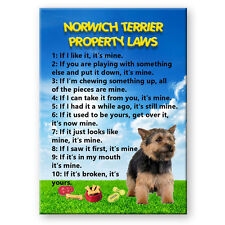 Norwich Terrier Property Laws Fridge Magnet No 2