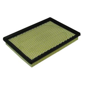 Air Filter Ecogard XA5560