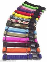 Wholesale Lot of 15 Nylon Whelping Collars Little Puppy Pet Toy Dog Collars