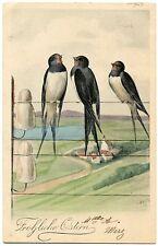 ARTIST SIGNED. ILLUSTRATEUR OHLER. OISEAUX .  BIRDS. HIRONDELLES. SWALLOWS