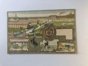 Cartolina Pubblicitaria Scatolette Carne di bue in conserva  Casaralta c13