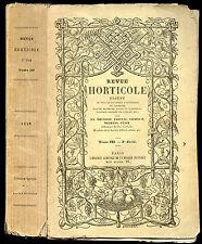 REVUE HORTICOLE 1849, 3° année. 24 planches couleurs. Botanique-Horticulture