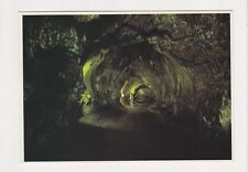 The Thurston Lava Tube located within Volcanoes National Park Hawaii Postcard