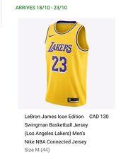976cfd5610d LeBron James Lakers Icon Edition Swingman Basketball Jersey Nike NBA