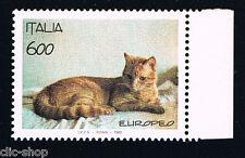 ITALIA 1 FRANCOBOLLO ANIMALI GATTO RAZZA EUROPEA 1993 nuovo**