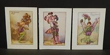 Flower Fairies Cicely M. Barker 3 Prints  c1940 G1#10