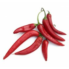 25 graines de Piment de Cayenne Non Traité seeds plantes légumes jardin potager