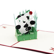 Panda Symbol Peace 3D Pop Up Card Friendship Childrens Day Happy Birthday Easter