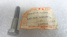 Kawasaki NOS NEW  913364 Screw 3/8x2 Astro Star SST Thunder Whisper Sno Jet 1972