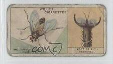 1924 Wills Do You Know Series 2 #18 How the Fly Walks Upsidedown? Card 0a1