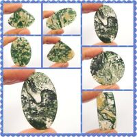 100% Natural Green Forest Moss Agate Loose Cabochon Gemstone NG10164-10199