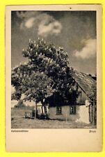 Postkarte Deutsches Reich Cachet MOLKAU en 1938 KASTANIENBLÜTE Popp, Glatz
