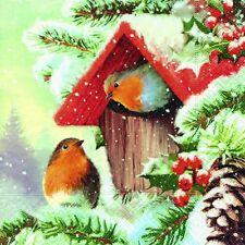 20 Servietten Vögel im Winter Birds Tiere Winter Weihnachten Winter 25x25 cm