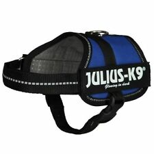 Julius-K9 Dog Harnesses