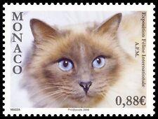 monaco ca 2009 exposition felin chat cat katse gatos 1v mnh **
