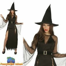 Black Classic Wicked Witch & Hat Adult Halloween Ladies Fancy Dress Costume