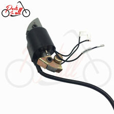 Tuzliufi Ignition Coil for G150 G200 G300 Engine Motors 30500-887-303 30560-883-015 30560-887-015 30560-887-791 New Z572