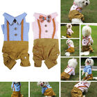 NEW Genglemen Lady Dog Cat Jumpsuit Suit Pet Clothes Clothing Suspender Trousers