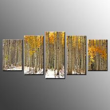 FRAMED 5 Panel Wall Art Decor Silver Birch Trunks Stretched Photo Canvas Prints