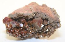 Vanadinite Morocco Cluster In Matrix COLLECTORS GRADE Specimen 5.5 oz.