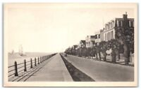 Early 1900s East Battery, Charleston, SC (Albertype) Postcard