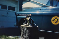 Vintage Photo Slide 1963 Basset Hound Dog Posed Classic Car