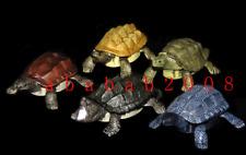 Takara Tomy reptile tortoise Turtle winding up gashapon figure (full set 5 Pcs)