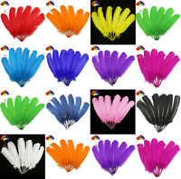 10-100pcs 13 pure colour 10-12inch Turkey Quill Feathers for Fashion Decorations