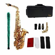 Saxophone Sax Eb Be Alto E Flat with Gloves Cleaning Cloth Brush Straps Golden