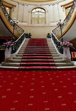 5x7ft Vinyl Wedding Red Carpet Stairway Photo Studio Backdrop Background