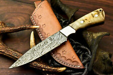 Custom Hand made Damascus Steel Skinning Blade Hunter Camping Full Tang Knife