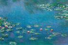 "Claude Monet - Art Poster (Waterlillies) (Size: 36"" x 24"")"