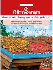 Blumenmischung Samen Dachbegrünung samen Blühende Dächer Steingarten Blumensamen