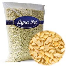 25 kg Erdnusskerne Splits weiss blanchiert Erdnüsse Lyra Pet Wildvogelfutter