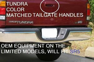 2000 - 2006 OEM TUNDRA TAILGATE HANDLE FACTORY COLOR MATCHED COLOR CODE 1E3 GRAY