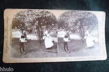 STA694 Enfants déguisement albumen STEREO Photo stereoview 1900