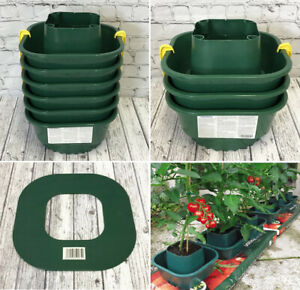 Growbag Pots Tomato Pots for Grow Bags Watering System Sets of 3, 6 and 12