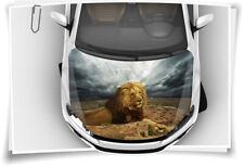 Löwe Afrika König Motorhaube Auto-Aufkleber Steinschlag-Schutz-Folie Airbrush