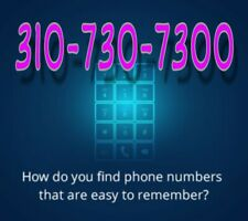 310 Easy phone number  LOS ANGELES California  Vanity Unique