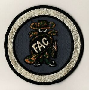 """USAF Patch F-4 PHANTOM II """"FORWARD AIR CONTROL"""" patch obtained in 1971, 4"""" Size"""