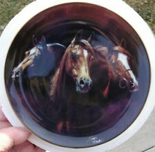 Danbury Mint Susie Morton Entering The Light Horse Plate Noble And Free Edition