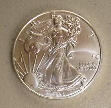 2020 1 oz $1 American Silver Eagle Bullion Coin Gem Uncirculated