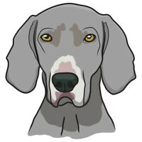 Weimaraner Dog Decal | Dog Lover D�cor Vinyl Sticker