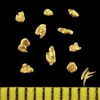 10 Echte Gold-Nuggets Alaska TOP-Geschenk ! 20-23 Karat Schmuck Münze Barren