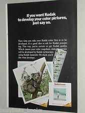 1970 Kodak ad, film & slide processing, Koala Bear