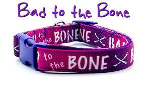 "Bad to the Bone dog collar handmade adjustable buckle collar 5/8"" wide or leash"